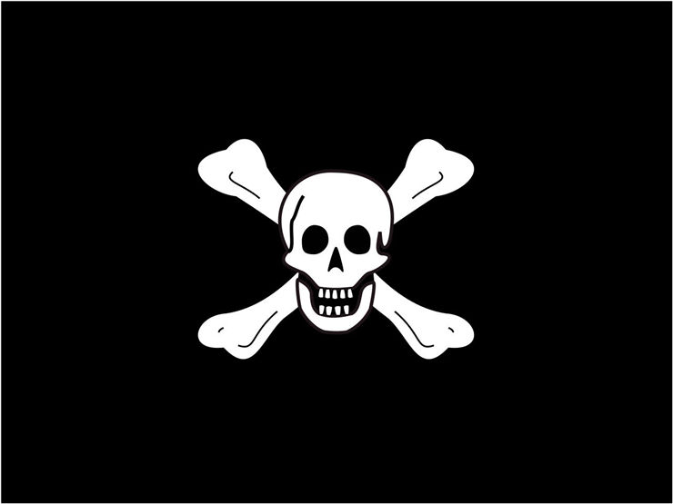 Picture Of Flag Of Pirate Richard Worley